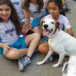 """""""Dia de SÃO FRANCISCO DE ASSIS - Benção dos animais"""""""